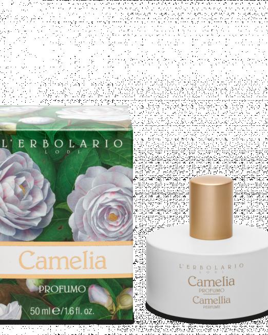 profumo-camelia